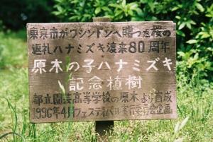 hanamizuki11jpg.jpg